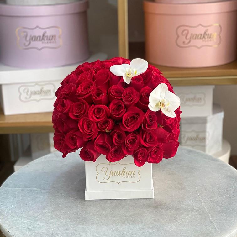 100 rosas rojas & 2 orquídeas phalaenopsis en mini caja yaakun