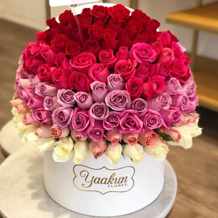 150 rosas en caja redonda degrade especial lovely