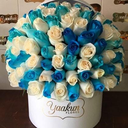 150 rosas en caja redonda especial azul&blanco