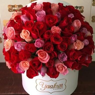 150 rosas en caja redonda especial rojo&rosa