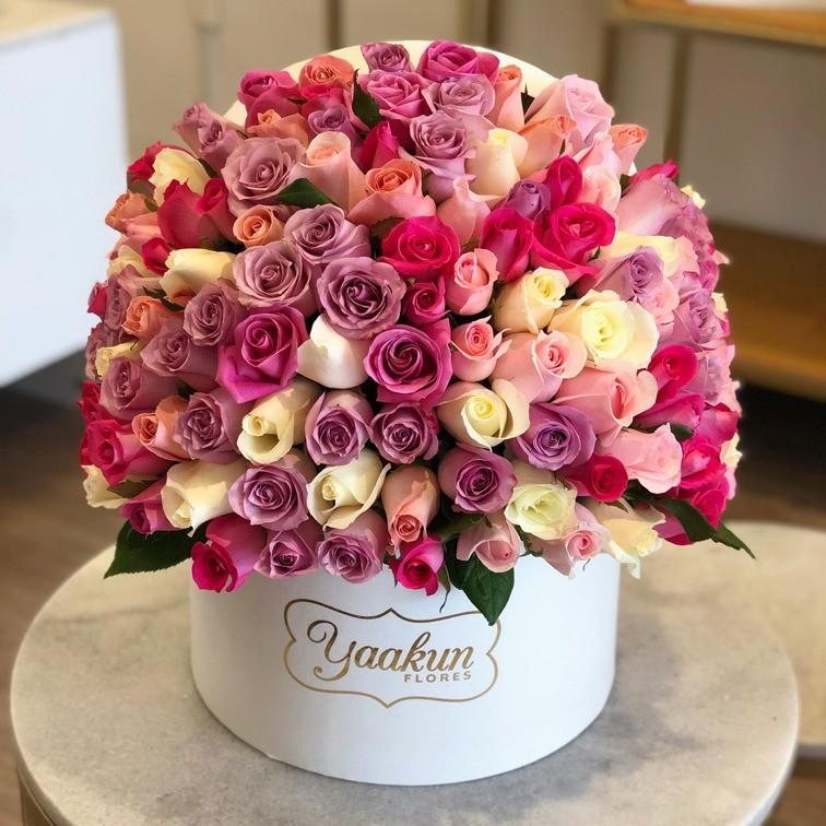 150 rosas en caja redonda lila especial 4 colores