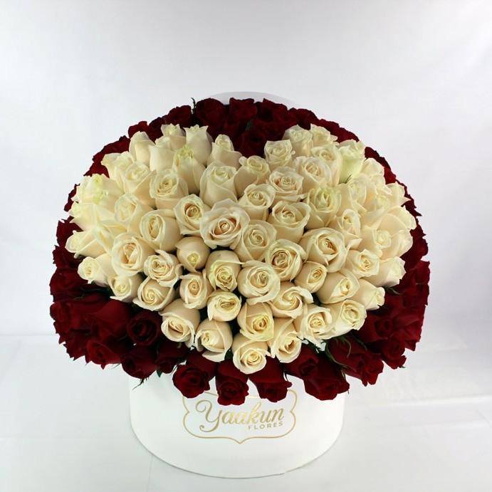 150 rosas en caja redonda mi corazón blanco