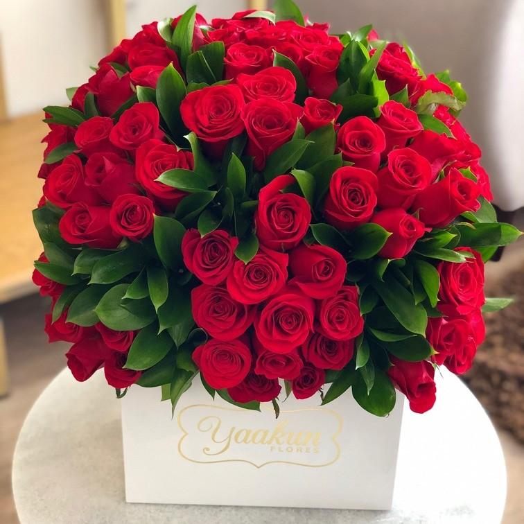 150 rosas & ruscus en caja blanca yaakun
