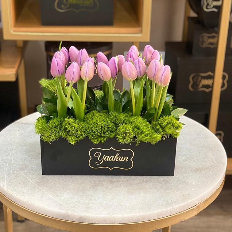 20 tulipanes en caja mini yaakun tulipán morado