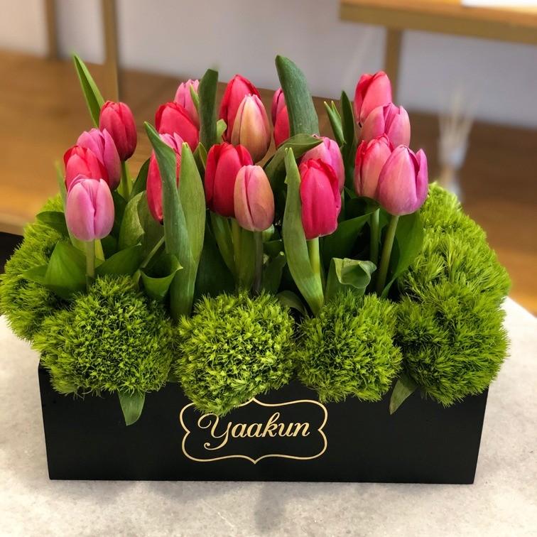 20 tulipanes en caja mini yaakun tulipán rojo & rosa
