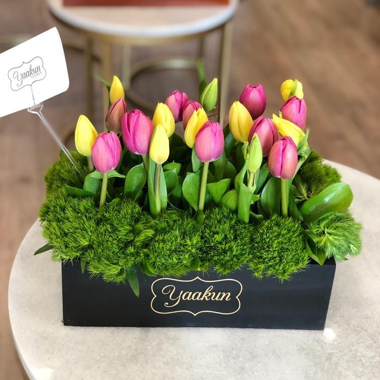 20 tulipanes en caja mini yaakun tulipanes
