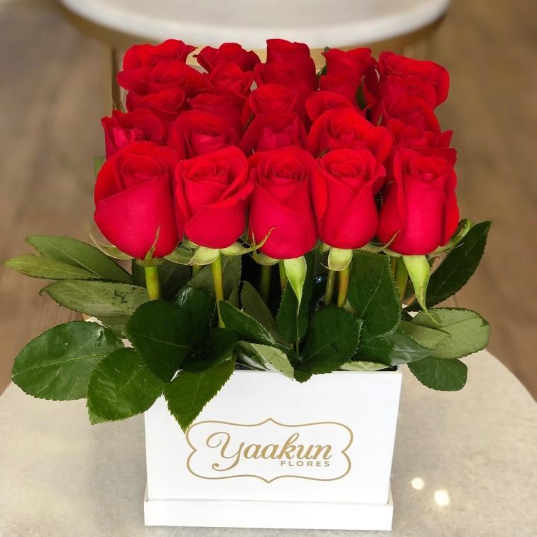 25 rosas rojas altas en caja blanca yaakun jardín