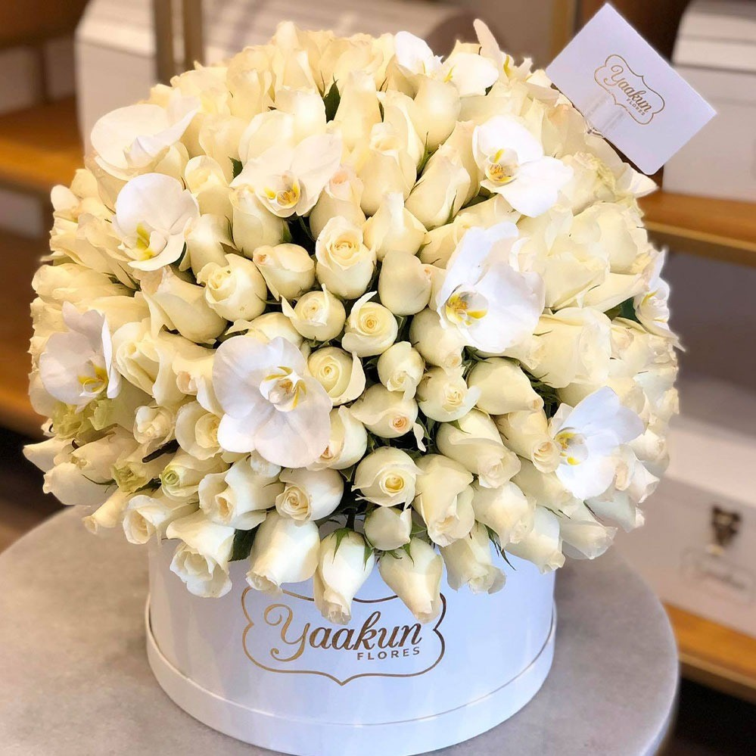 250 rosas blancas & 12 orquídeas  en caja circular blanca dulce anhelo