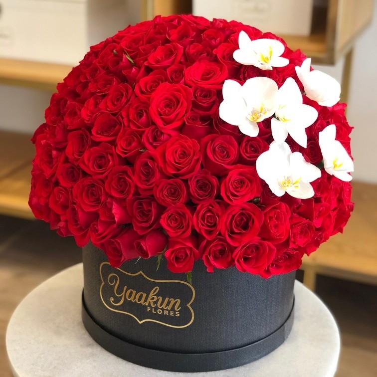 250 rosas en caja redonda con orquídeas esfera lindo amor