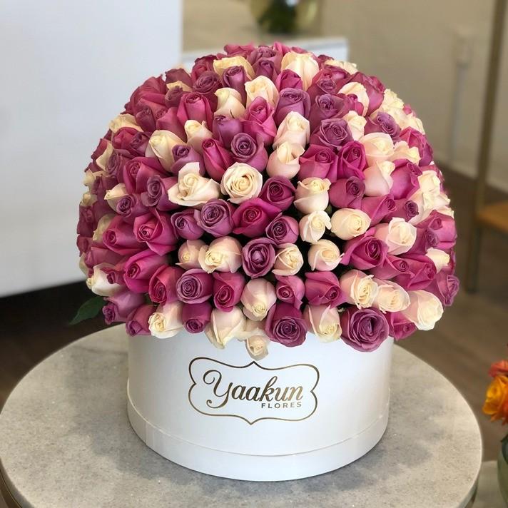 250 rosas en caja redonda esfera 3 colores