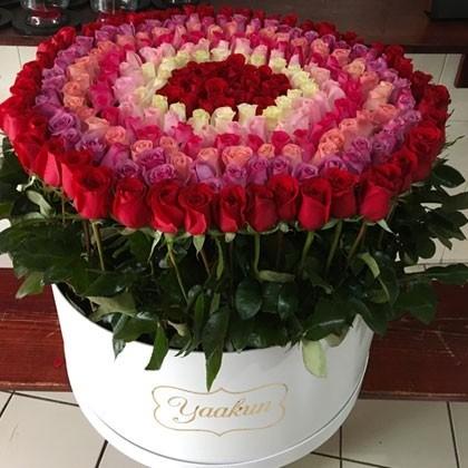 300 rosas colores en caja redonda altas maxi bello sentimiento