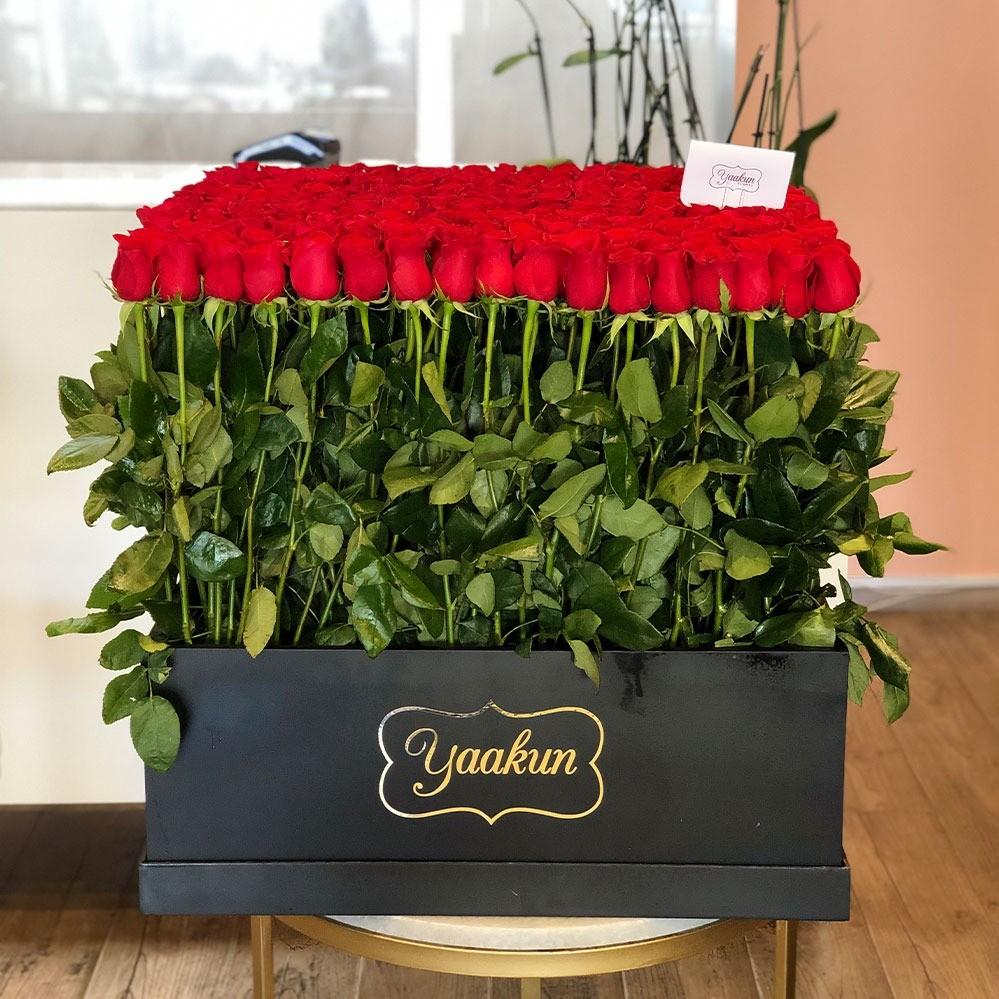 300 rosas en caja grande maxi yaakun jardín rojo