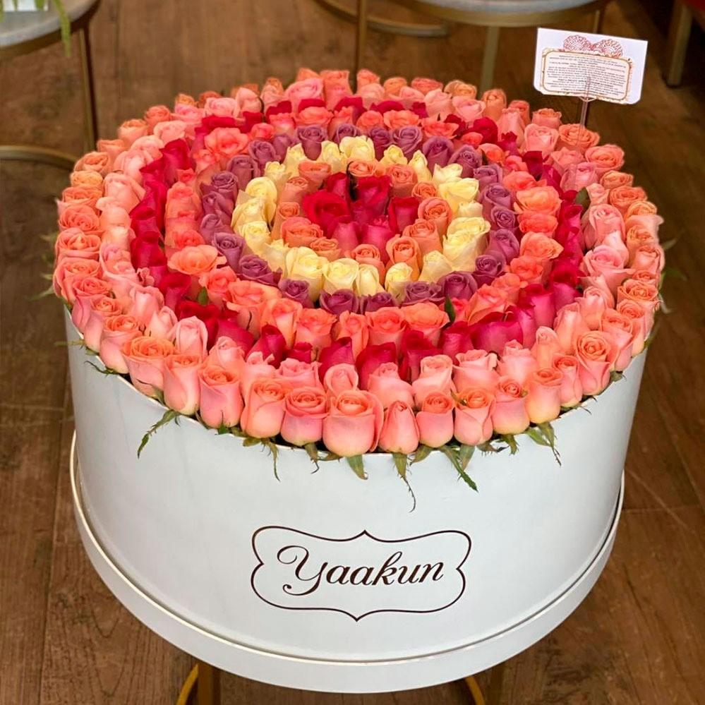 300 rosas en maxi caja circular blanca degrade