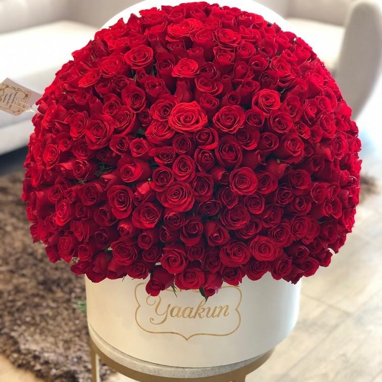 350 rosas en caja redonda media esfera
