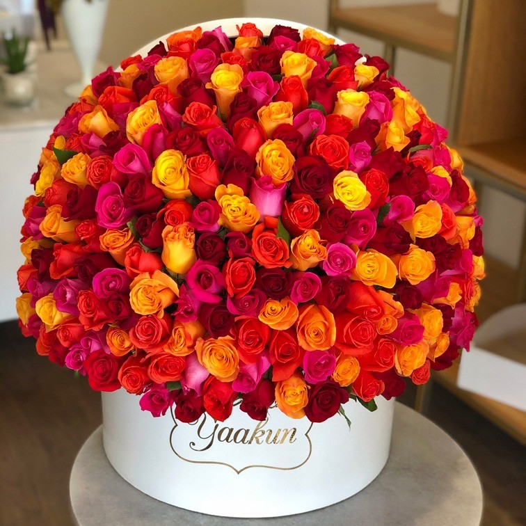350 rosas primaveral en caja redonda media esfera