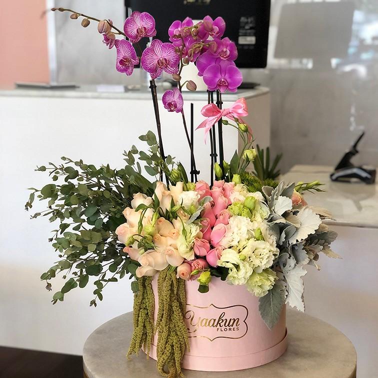 40 rosas & orquídeas en caja circular rosita mi cielo