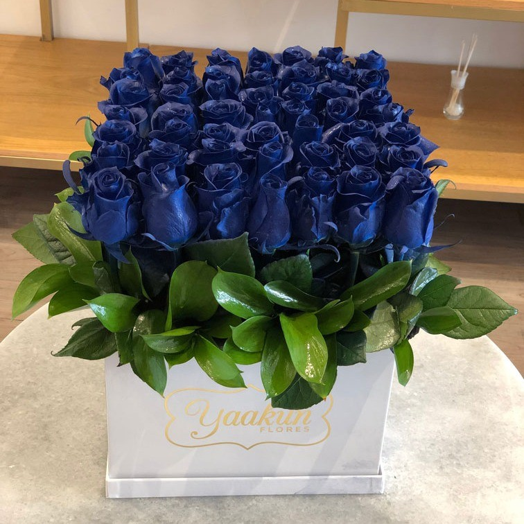 49 rosas azules altas en caja yaakun