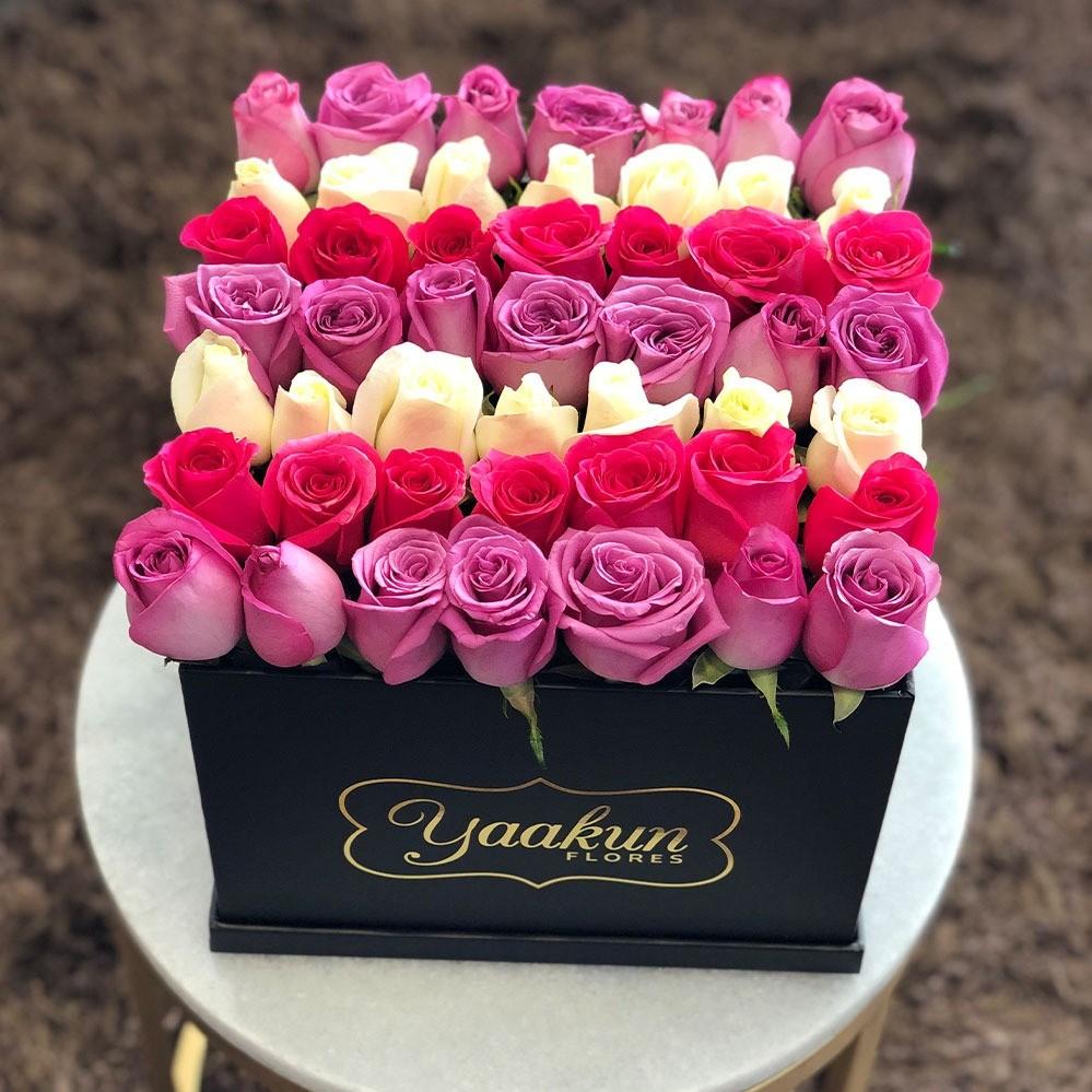 49 rosas de colores botón en caja negra yaakun tonos en línea