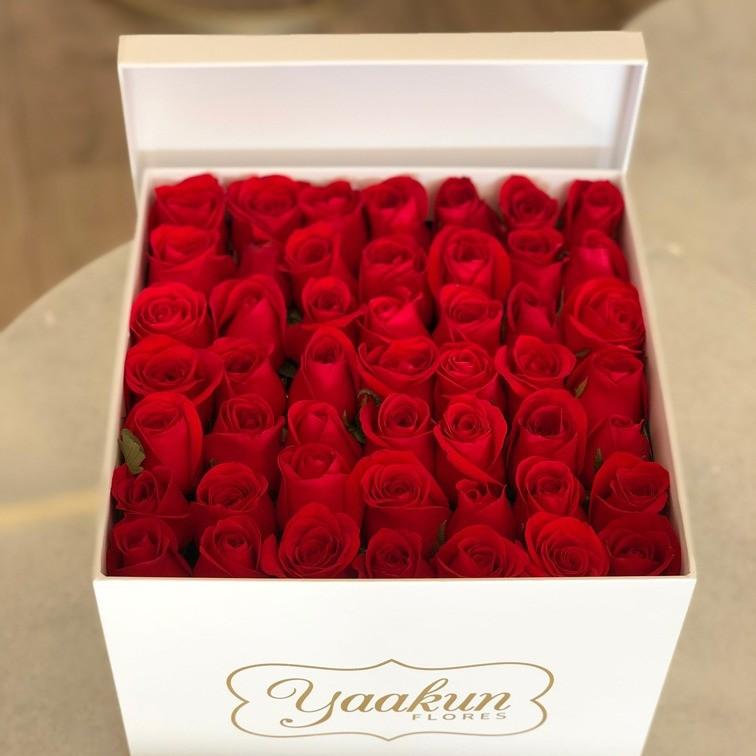 49 rosas rojas en caja blanca con tapa yaakun amor