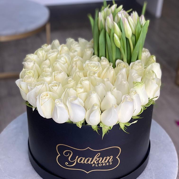50 rosas & 30 tulipanes en caja negra redonda amor puro