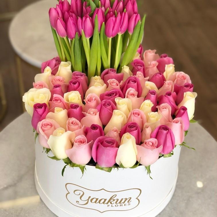 50 rosas & 30 tulipanes en caja redonda ilusión colores