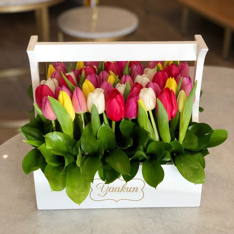 50 tulipanes en jardinera blanca yaakun