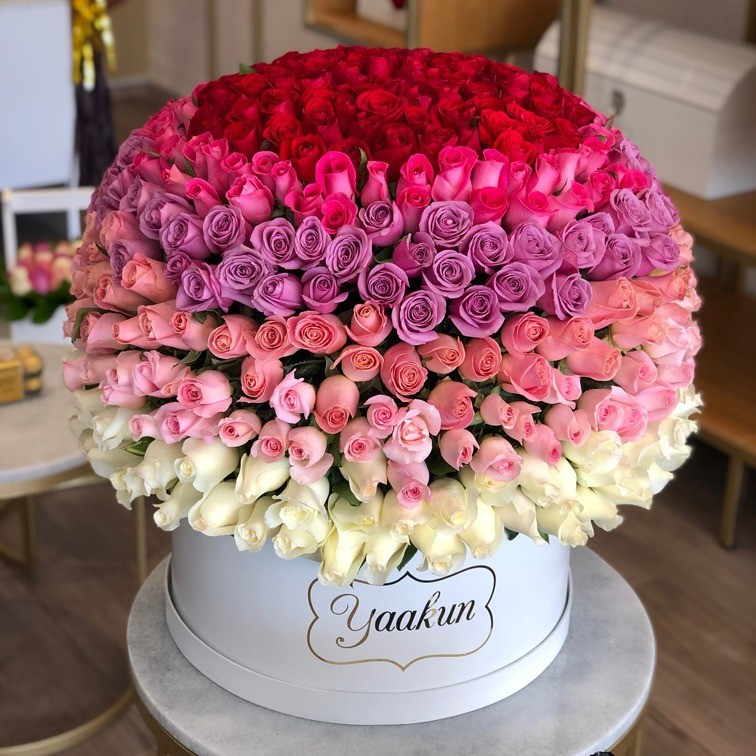 500 rosas en caja redonda degrade maxi esfera lovely