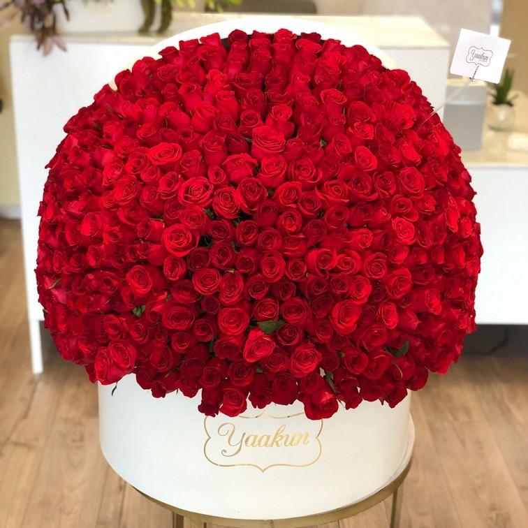 500 rosas en caja redonda media maxi esfera