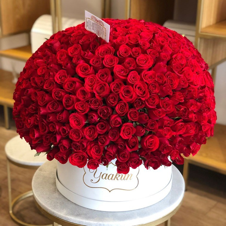 500 rosas en caja redonda maxi