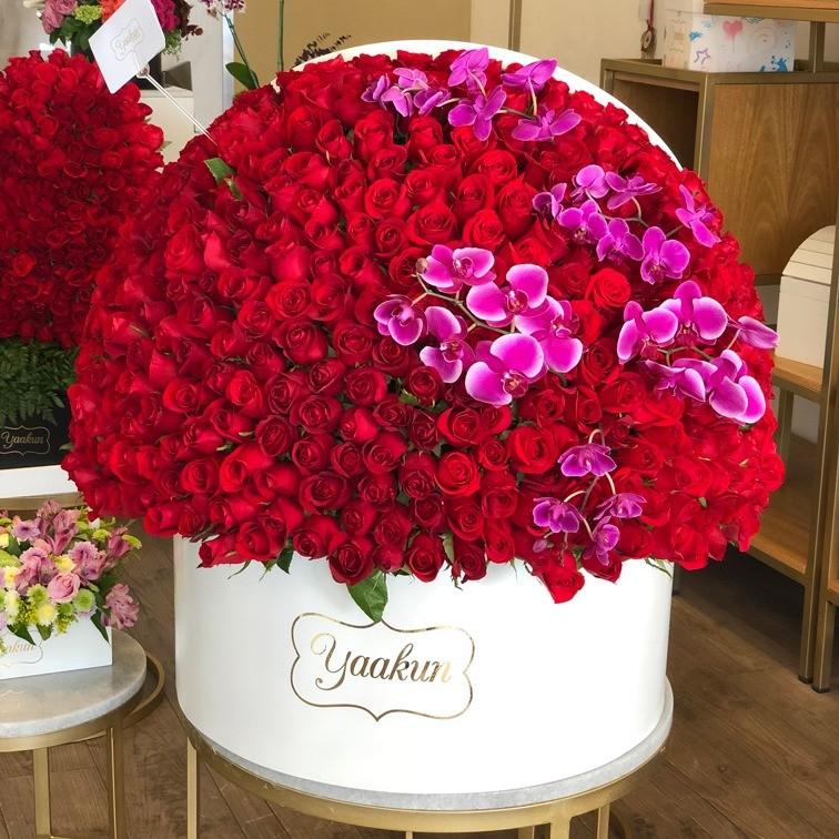500 rosas en caja redonda semi esfera con orquídeas magenta