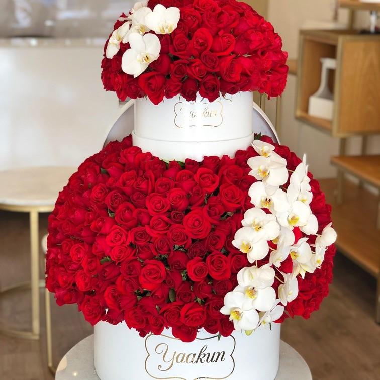 500 rosas & orquídeas en doble caja