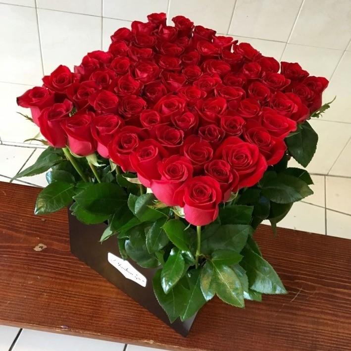 65 rosas rojas altasen caja negra yaakun jardín