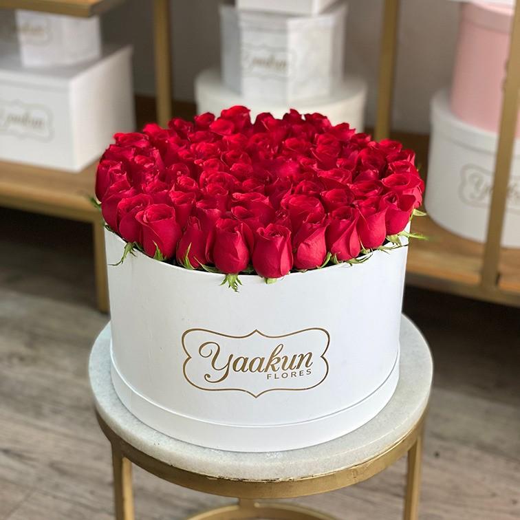 85 rosas en caja redonda botón rojo