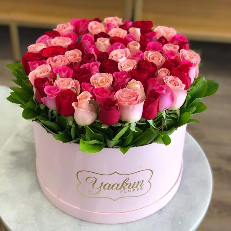 85 rosas en caja redonda botón ternura rojo&rosa