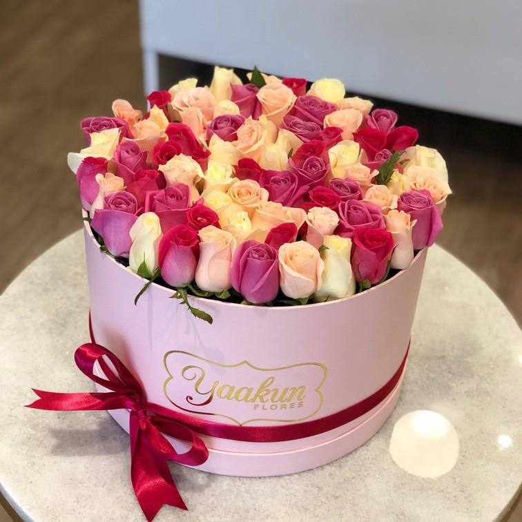 85 rosas en caja redonda botón ternura rosa & lila