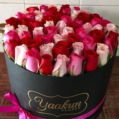 85 rosas en caja redonda negra botón tierno rojo&rosa