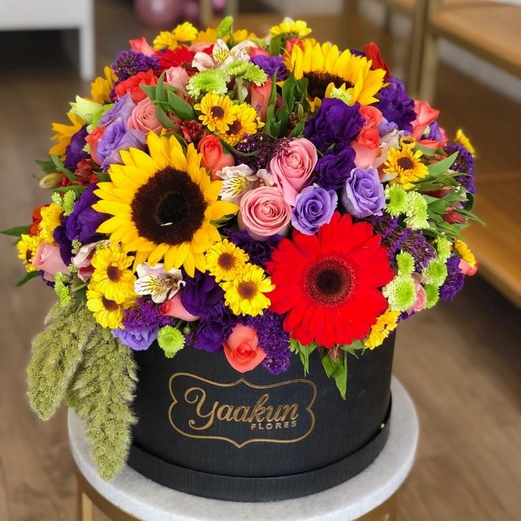 Caja circular bella primavera