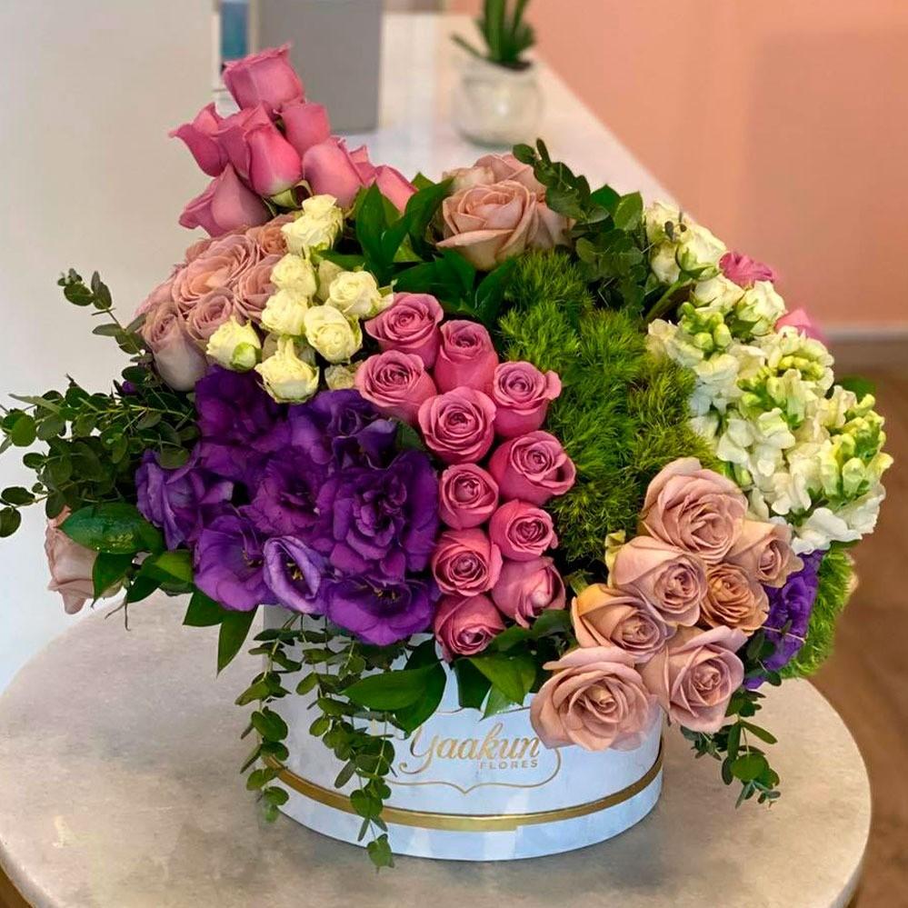Caja circular lila marmoleada sintonía