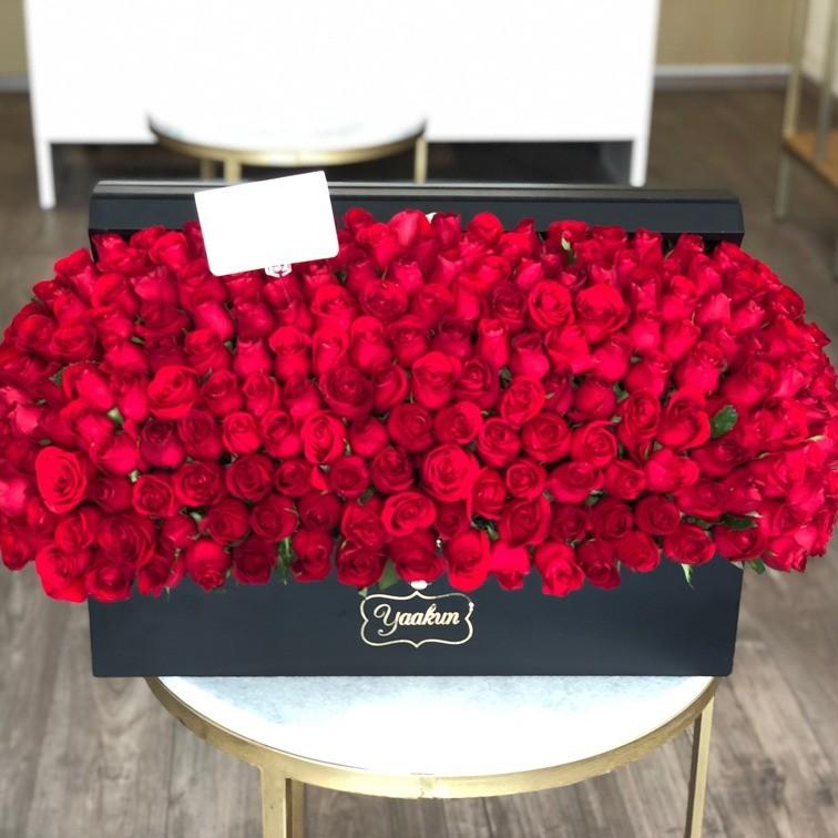 Cofre con 220 rosas rojas