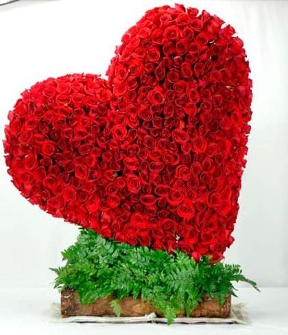 corazn de 400 rosas