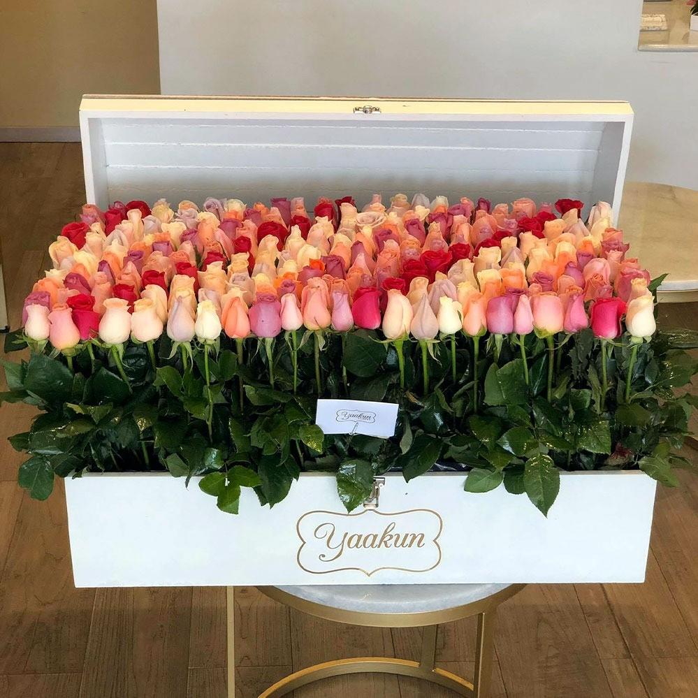 Mega cofre con 240 rosas mi tierno amor