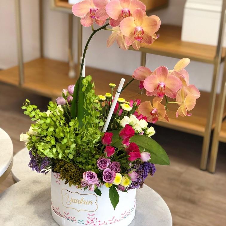 Orquídeas en caja circular blanca edición especial yaakun