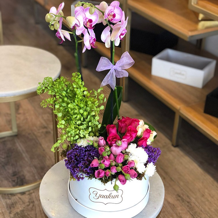 Orquídeas en caja circular blanca