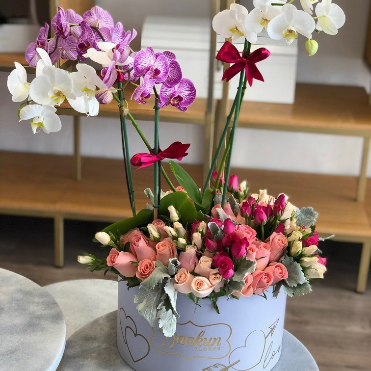 Orquídeas en caja circular lila edición especial yaakun
