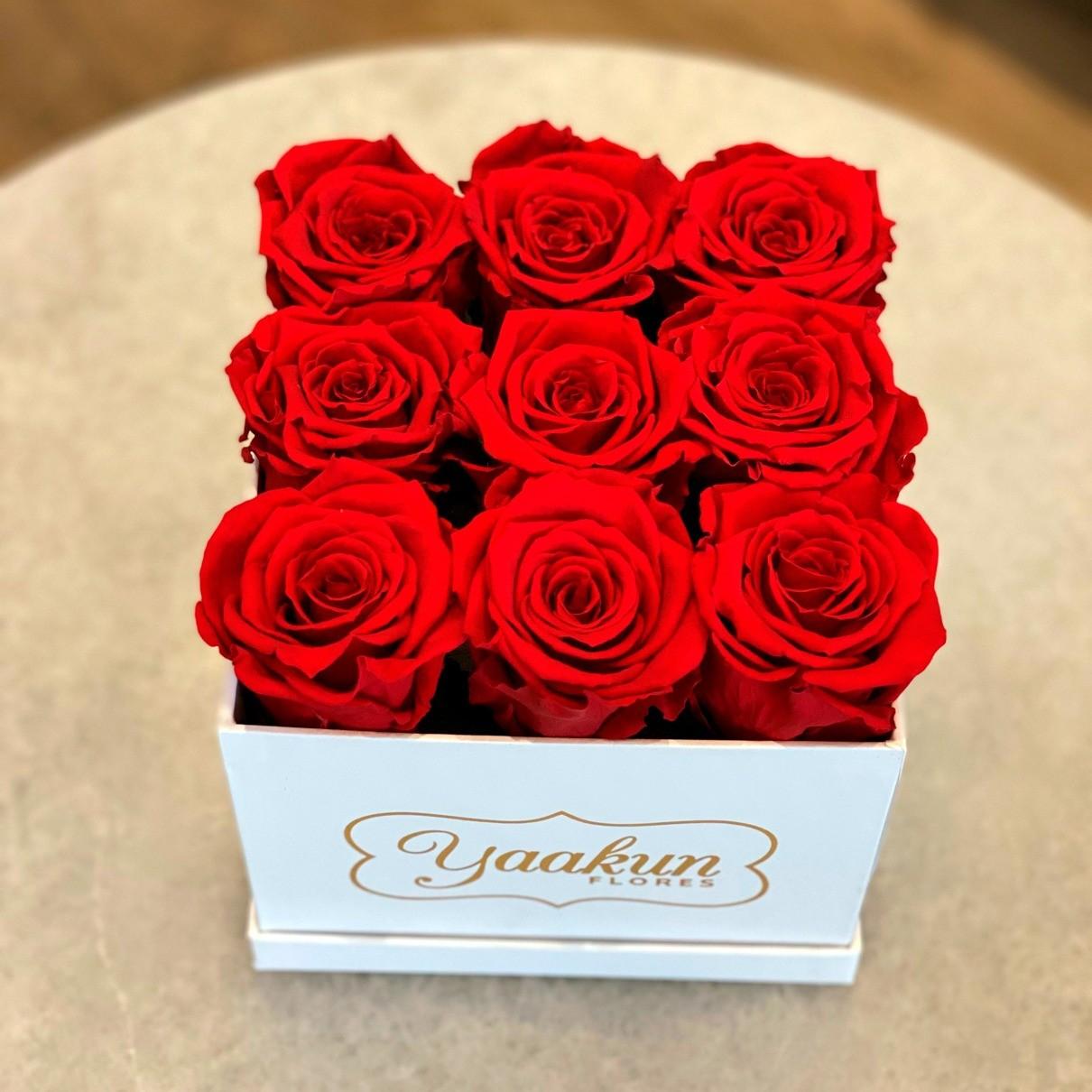 Rosas eternas caja blanca cuadrada chica rosas rojas