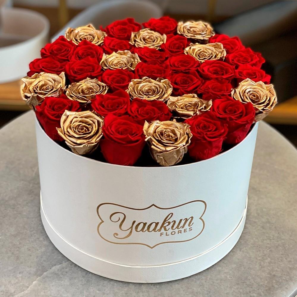 Rosas eternas en caja circular red and gold