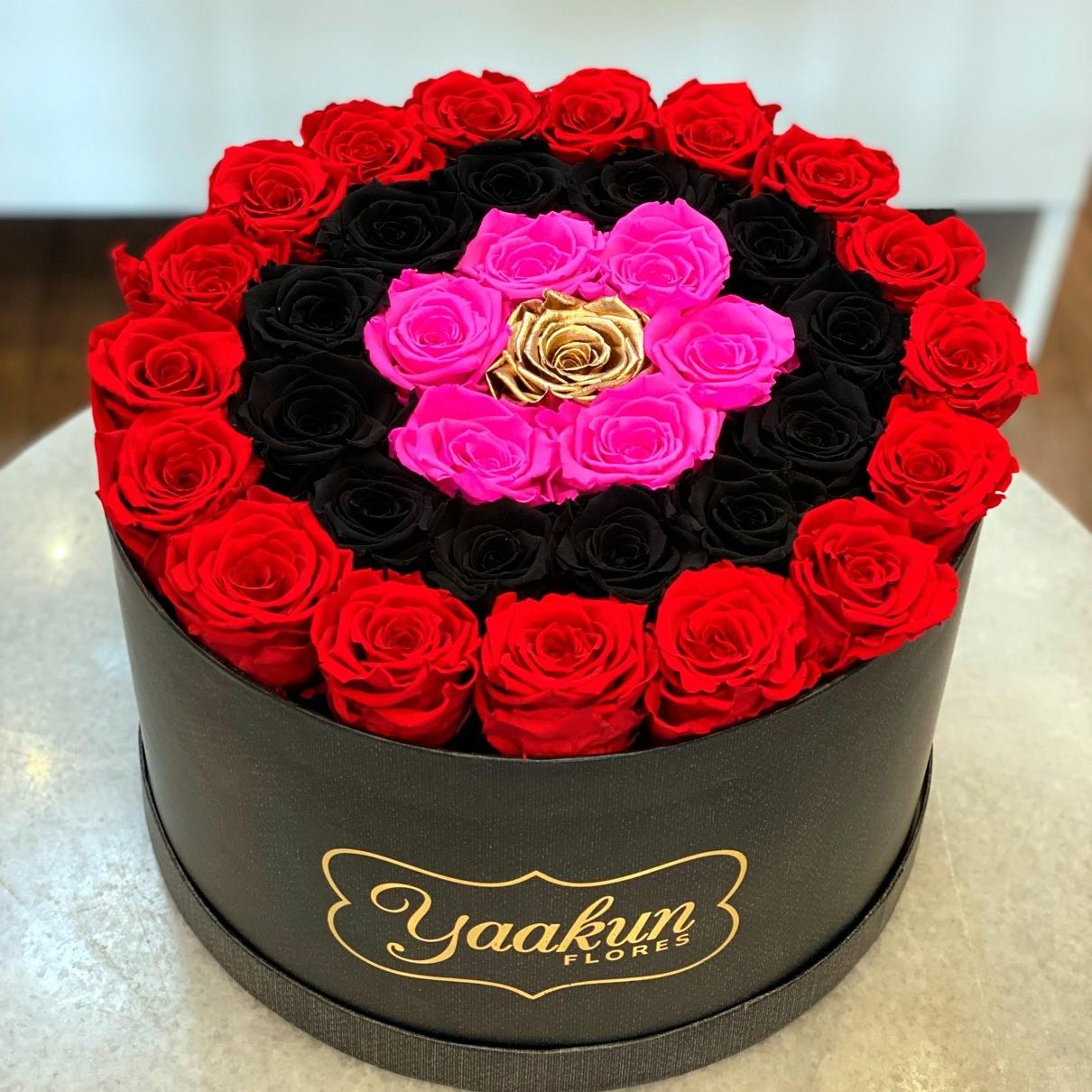 Rosas eternas en caja circular red, black, fuchsia & gold