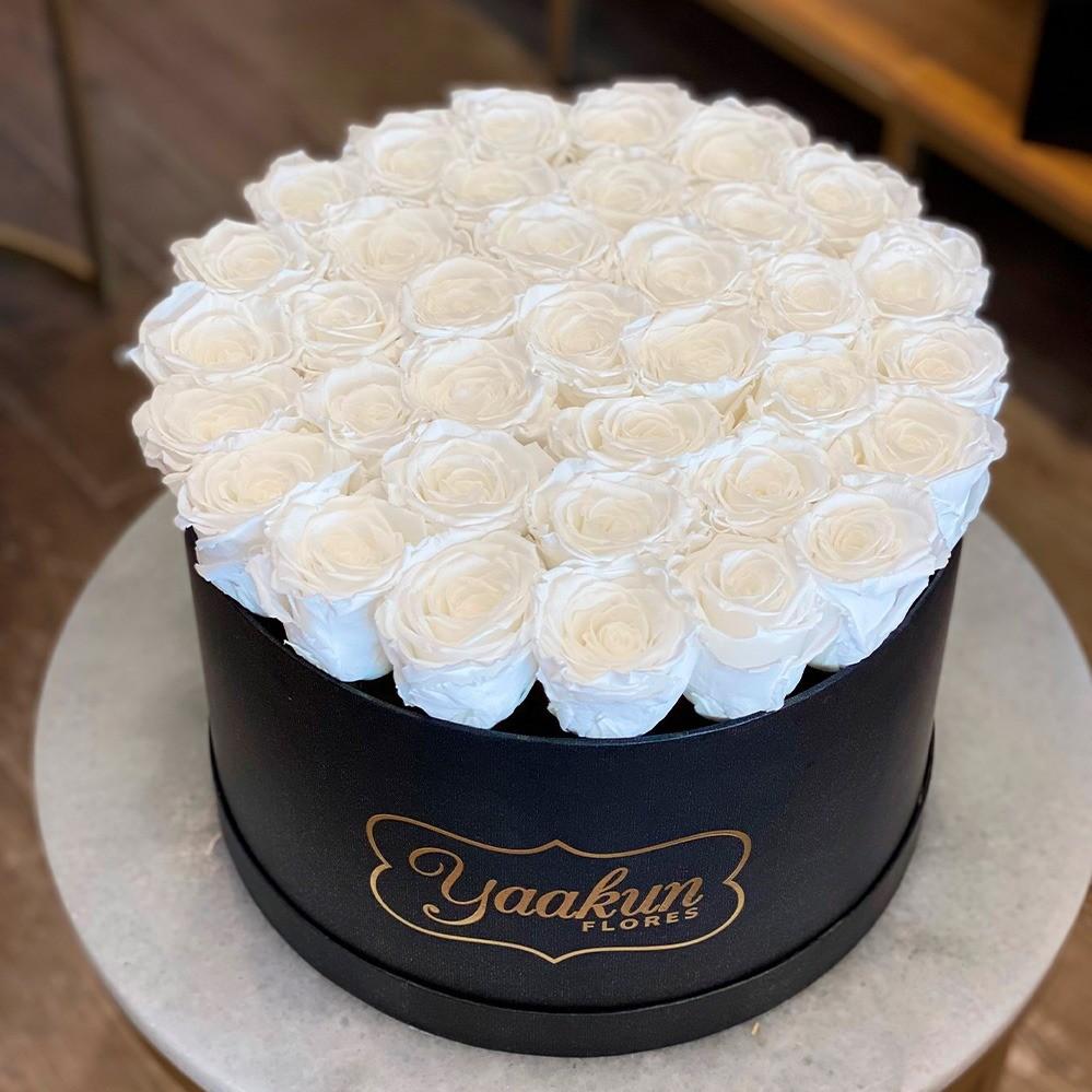 Rosas eternas en caja negra circular rosas blancas
