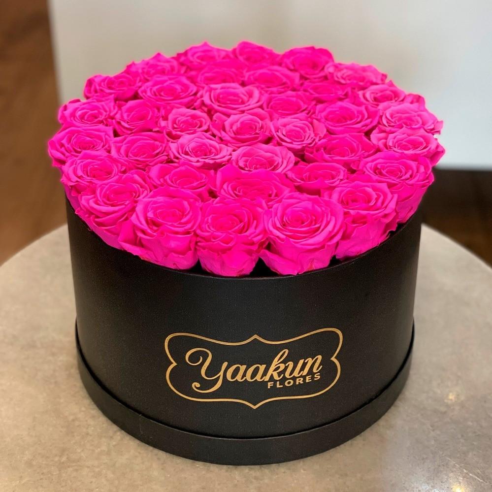 Rosas eternas en caja negra circular rosas fuchsia.